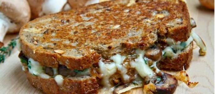 mushroom-grilled-cheese-798x350